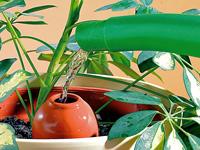 terracotta wasserspender classico f r topfpflanzen im 3er set. Black Bedroom Furniture Sets. Home Design Ideas